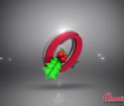 Omnisport – Navidad LG